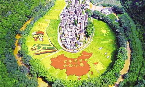 云南九乡开种多彩水稻